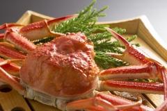 1杯蟹イメージ